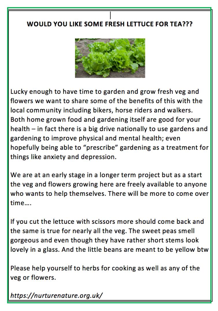 lettuceforfree